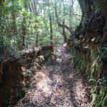 山中の「里道」